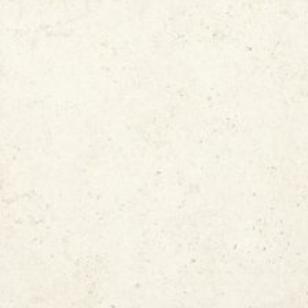 Corail Blanc