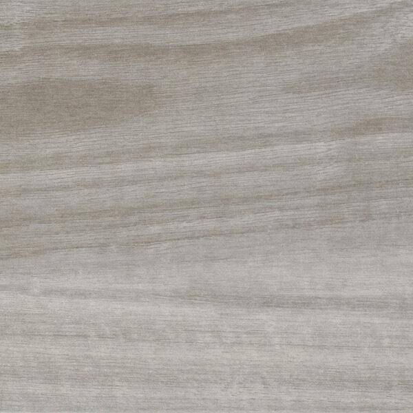 Araucaria Gris