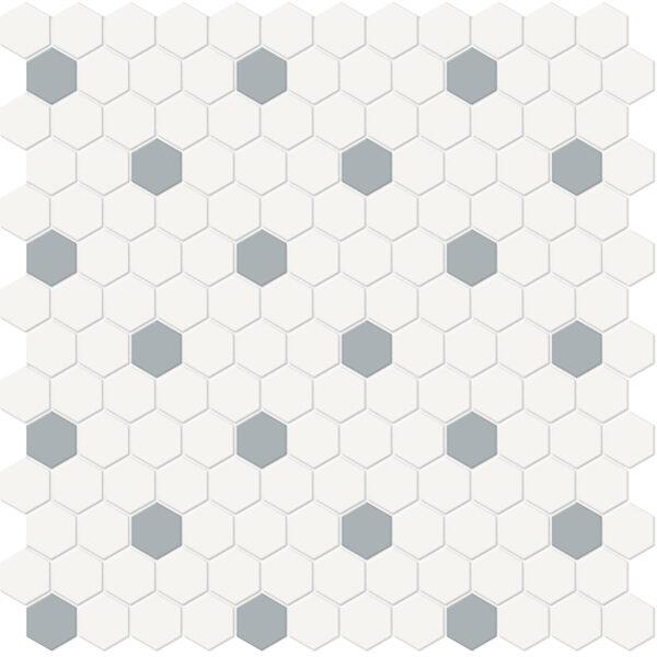 Canvas w/ Cloud Hexagon Mosaic