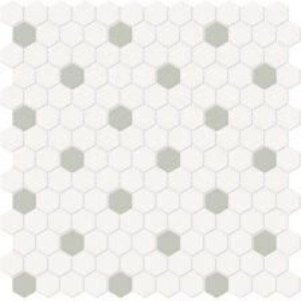 Canvas w/ Soft Sage Hexagon Mosaic