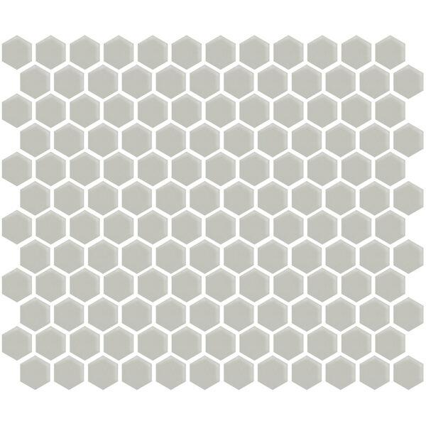 "Gray Gloss 1"" Hexagon"